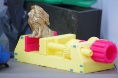leeuw-vise